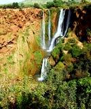 美丽的瀑布 免版税库存图片