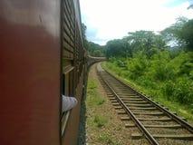 美丽的火车在斯里兰卡 库存图片