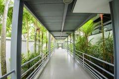 美丽的热带庭院 库存照片
