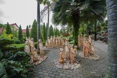 美丽的热带庭院 库存图片