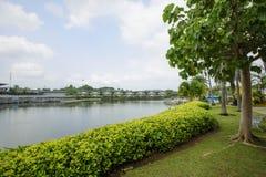 美丽的热带庭院 免版税库存照片