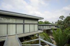 美丽的热带庭院 免版税库存图片