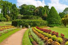 美丽的热带植物园 免版税图库摄影