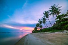 美丽的热带海滩和海有可可椰子树的在sunri 库存图片