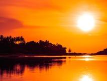 美丽的热带海滩海和海洋有可可椰子树的在日出时间 免版税图库摄影