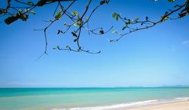 美丽的热带海运海滩 免版税库存图片