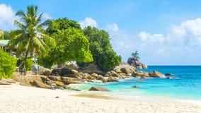 美丽的热带海滩在塞舌尔群岛 库存照片