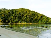 美丽的热带海滩,当退潮和雨林在安达曼 免版税库存照片
