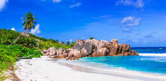 美丽的热带海滩Anse椰树,拉迪格岛海岛, Seychelle 库存图片