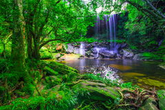 美丽的热带雨林瀑布在深森林, Phu Kradueng国家公园里 免版税库存照片
