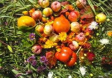 美丽的照片用苹果、红色叶子、在木背景的花金盏草和草本 免版税库存照片