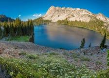 美丽的爱达荷山sceen与湖和山 免版税库存照片