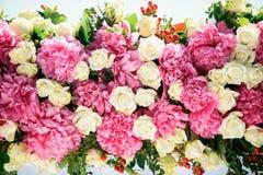 美丽的牡丹和玫瑰 免版税库存照片