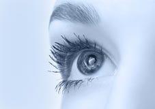 美丽的特写镜头眼睛 免版税库存照片