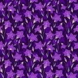 美丽的狂放的会开蓝色钟形花的草开花无缝的样式4 库存图片