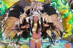 美丽的狂欢节女孩 库存图片