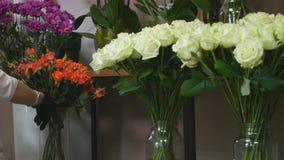 美丽的玫瑰的汇集待售在一家植物的商店 免版税库存图片