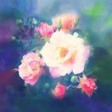 美丽的玫瑰色花 库存照片