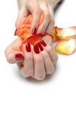 美丽的现有量修指甲钉子理想的红色 免版税库存照片