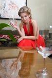 美丽的玻璃酒妇女 库存照片