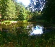 美丽的瑞典湖 免版税库存图片