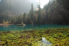 美丽的瓷五颜六色的jiuzhai水 免版税图库摄影