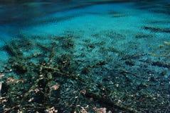 美丽的瓷五颜六色的jiuzhai水 免版税库存图片