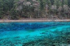 美丽的瓷五颜六色的jiuzhai水 库存图片