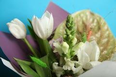 美丽的生日花束,紫色和白色 库存图片