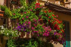 美丽的用花装饰的大阳台或阳台在斯佩洛的中心 免版税库存图片