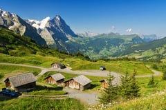 美丽的田园诗山环境美化与乡间别墅(瑞士山中的牧人小屋)在夏天 免版税图库摄影