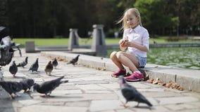 美丽的白肤金发的女孩哺养的鸟在湖的公园 影视素材