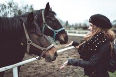 美丽的白肤金发的女孩从手喂养一匹大棕色马 免版税库存照片