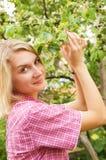 美丽的白肤金发的女孩 库存照片