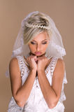美丽的白肤金发的新娘纵向  图库摄影