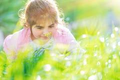 美丽的白肤金发的耳朵女花童头发她小的草甸麦子通配花圈 免版税图库摄影