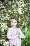 美丽的白肤金发的蓝眼睛的女孩 库存图片