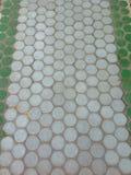美丽的白色和绿色走廊 免版税库存照片