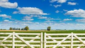 美丽的白色尖桩篱栅门 免版税库存图片