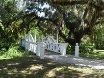 美丽的白色桥梁 库存照片