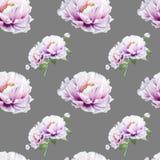 美丽的白色牡丹无缝的样式 ?? 花卉图案 标志图画 库存例证