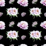 美丽的白色牡丹无缝的样式 ?? 花卉纹理 标志图画 库存例证