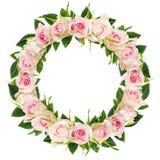 美丽的白色玫瑰开花和在一个圆的框架的叶子 免版税库存图片