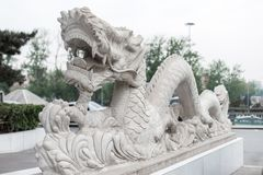 美丽的白色龙雕象在中国 库存图片