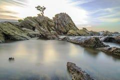 美丽的盆景,大约从市中心的15英里 免版税图库摄影