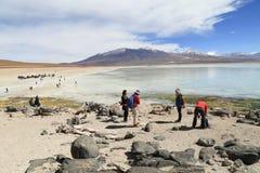 美丽的盐水湖在阿塔卡马沙漠 免版税库存图片