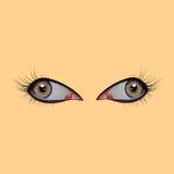 美丽的眼睛女性 眼皮,学生,睫毛,反射 也corel凹道例证向量 皇族释放例证