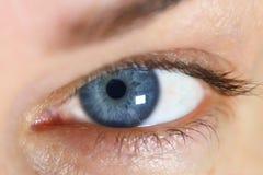 美丽的眼睛妇女 图库摄影
