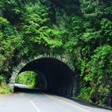 美丽的石隧道 库存照片