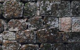 美丽的砖墙 免版税库存照片